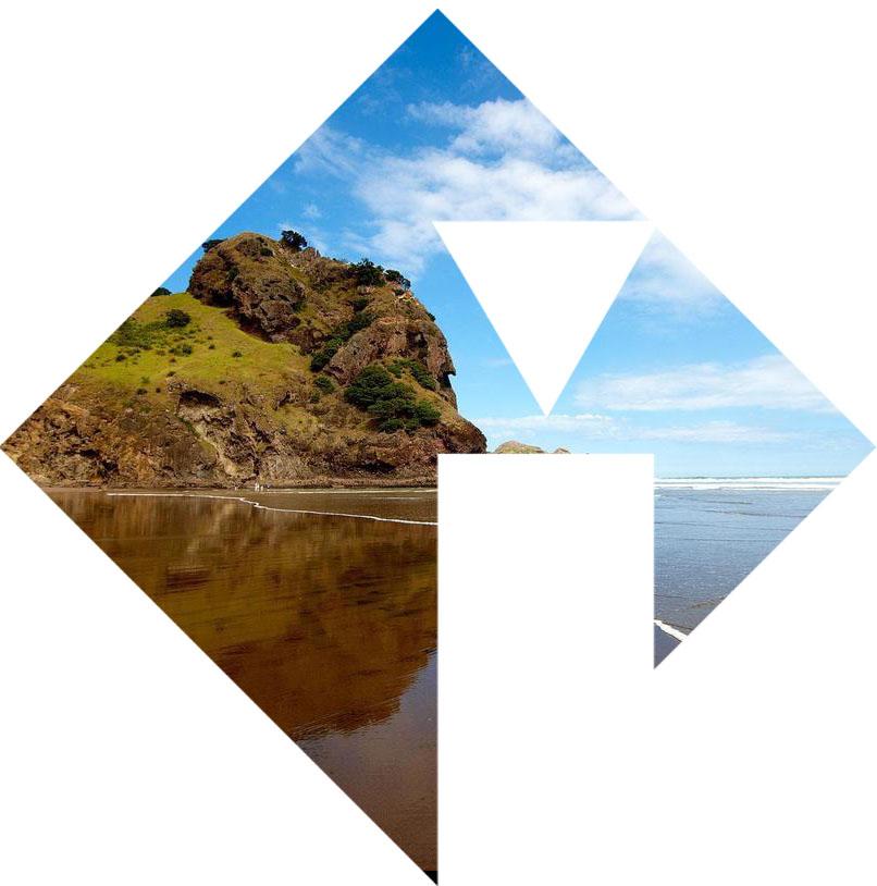 NZ Logo 2.jpg
